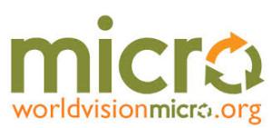 world vision micro logo